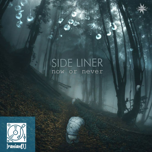 Side Liner - Now or Never
